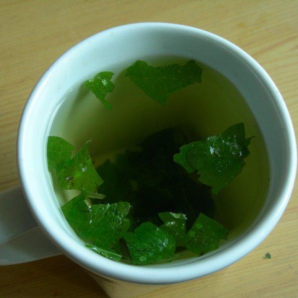 melissa чай из мелиссы