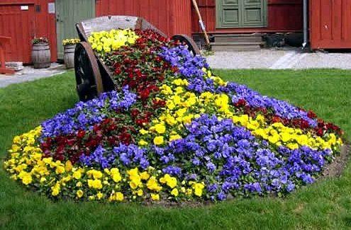 типы цветников и клумб