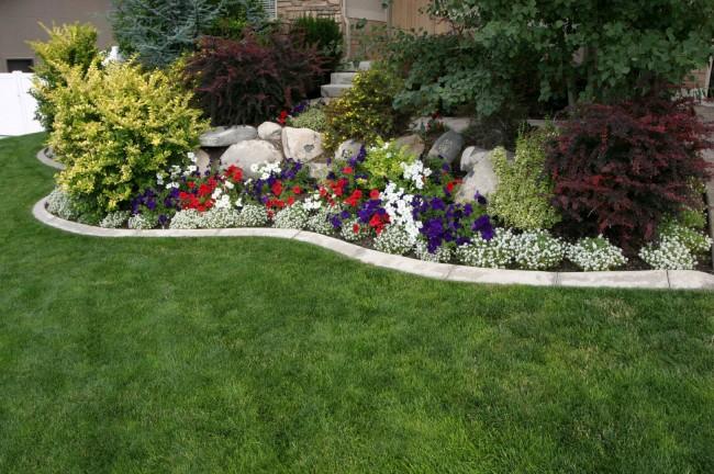 клумбы ландшафт дачного участка цветами