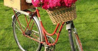 Оригинальные клумбы возле дома — велосипеды с цветами
